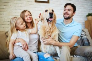 familia cuidando perro